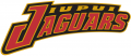 IUPUI Jaguars 1998-Pres Wordmark Logo iron on transfer