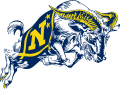 Navy Midshipmen 1998-Pres Secondary Logo iron on transfer