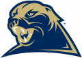 Pittsburgh Panthers 2002-2015 Alternate Logo 01 iron on transfer