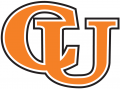 Campbell Fighting Camels 2005-2007 Wordmark Logo iron on transfer