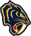 Nashville Predators 2019 20 Special Event Logo iron on transfer