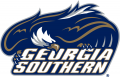 Georgia Southern Eagles 2004-2009 Primary Logo decal sticker