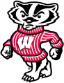 Wisconsin Badgers 2002-Pres Secondary Logo 01 decal sticker
