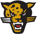 IUPUI Jaguars 1998-2007 Secondary Logo 01 iron on transfer