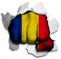 hulk ROMANIA Flag decal sticker