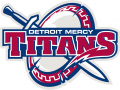 Detroit Titans 2016-Pres Primary Logo iron on transfer