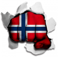 hulk norwayc flag decal sticker