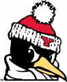 Youngstown State Penguins 1993-Pres Alternate Logo 06 decal sticker