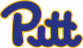 Pittsburgh Panthers 1973-1996 Wordmark Logo iron on transfer