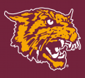 Bethune-Cookman Wildcats 2000-2015 Alternate Logo 02 decal sticker