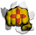 hulk New Mexico State Flag decal sticker