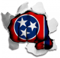 hulk Tennessee State Flag decal sticker