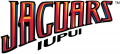 IUPUI Jaguars 2008-Pres Wordmark Logo iron on transfer