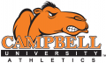 Campbell Fighting Camels 2005-2007 Wordmark Logo 04 iron on transfer