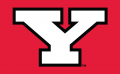 Youngstown State Penguins 1993-Pres Alternate Logo decal sticker