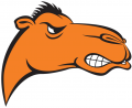 Campbell Fighting Camels 2005-2007 Alternate Logo iron on transfer