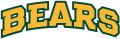 Baylor Bears 2005-2018 Wordmark Logo 05 iron on transfer