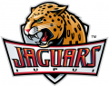 IUPUI Jaguars 2008-Pres Primary Logo iron on transfer