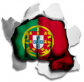 hulk PORTUGAL Flag decal sticker