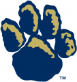 Pittsburgh Panthers 1997-2018 Alternate Logo iron on transfer