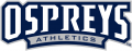 UNF Ospreys 2014-Pres Wordmark Logo 01 decal sticker