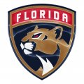 florida panthers crystal logo iron on stickers