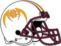 Bethune-Cookman Wildcats 2010-2015 Helmet decal sticker