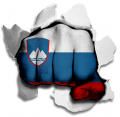 hulk SLOVENIA Flag decal sticker