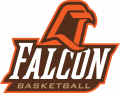 Bowling Green Falcons 1999-2005 Misc Logo iron on transfer