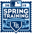 Tampa Bay Rays 2015 Event Logo iron on transfer