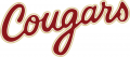 College of Charleston Cougars 2013-Pres Wordmark Logo 02 decal sticker