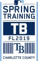 Tampa Bay Rays 2019 Event Logo iron on transfer