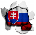 hulk SLOVAKIA Flag decal sticker