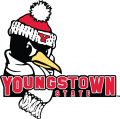Youngstown State Penguins 2006-Pres Secondary Logo decal sticker