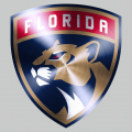 Florida Panthers Stainless steel logo iron on transfer