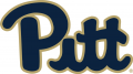 Pittsburgh Panthers 2016-2018 Primary Logo iron on transfer