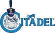 The Citadel Bulldogs