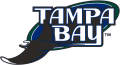 Tampa Bay Rays 2001-2007 Primary Logo decal sticker