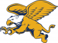 Canisius Golden Griffins 2006-Pres Secondary Logo decal sticker