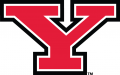 Youngstown State Penguins 2006-Pres Primary Logo decal sticker