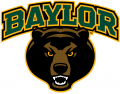 Baylor Bears 2005-2018 Alternate Logo 04 iron on transfer