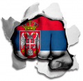 hulk SERBIA Flag decal sticker