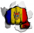hulk MOLDOVA Flag decal sticker