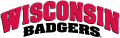 Wisconsin Badgers 2002-Pres Wordmark Logo 01 iron on transfer