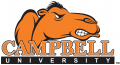 Campbell Fighting Camels 2005-2007 Wordmark Logo 05 iron on transfer