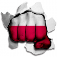 hulk POLAND Flag decal sticker