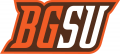 Bowling Green Falcons 2006-2011 Alternate Logo 04 iron on transfer