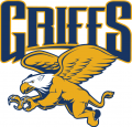 Canisius Golden Griffins 2006-Pres Alternate Logo 02 decal sticker