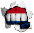 hulk NETHERLANDS Flag decal sticker