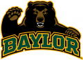 Baylor Bears 2005-2018 Alternate Logo 08 iron on transfer